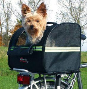 panier de vélo pour chien