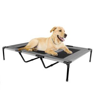 lit pour chiens